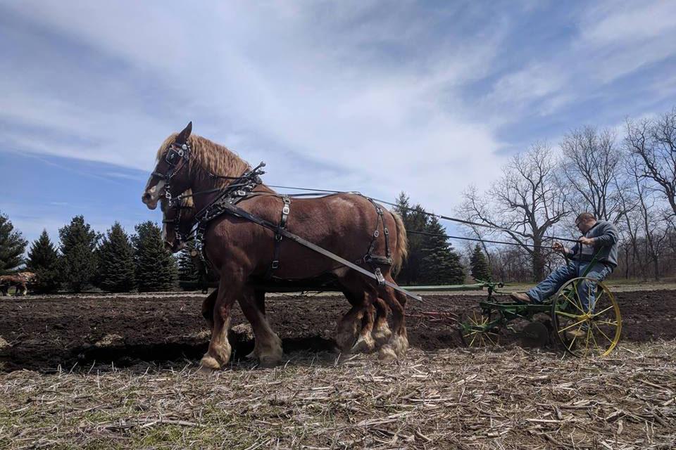 Plow Day April 28th La Porte County Historical Society